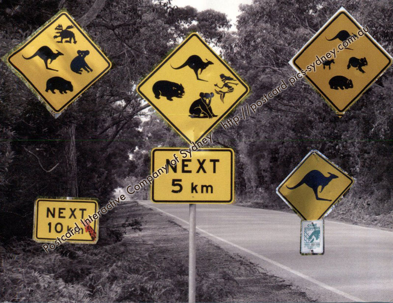 Australian Road Signs - Humorous