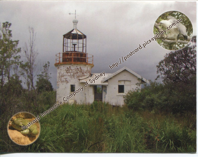 NSW Lighthouse - Crookhaven Head (+Sea Eagle & Tree Frog)