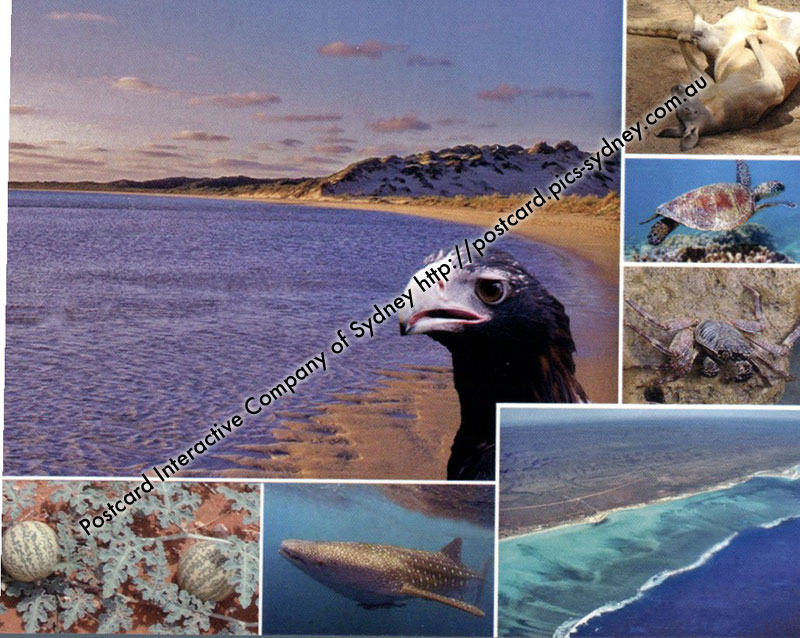 WA UNESCO - Ningaloo Coast