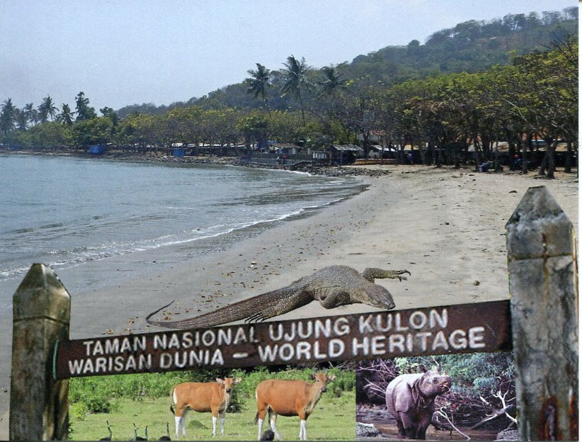 Indonesia UNESCO - Ujung Kulon National Park