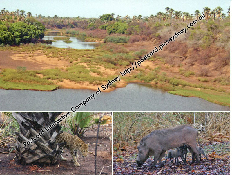 Senegal UNESCO - Niokolo-Koba National Park
